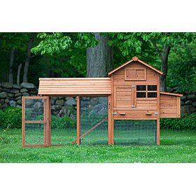 The Clubhouse Coop W Run Up To 4 Chickens From My Pet
