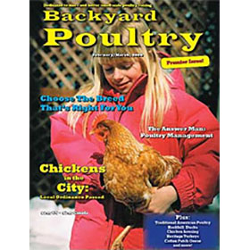 backyard poultry magazine 1 year subscription from my pet chicken