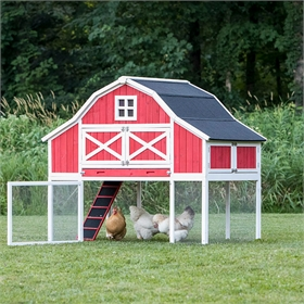 Gambrel Roof Chicken Coop