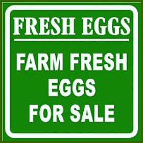 Farm Fresh Eggs Sign From My Pet Chicken