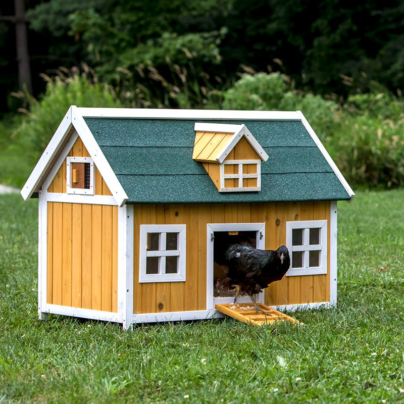 The Cottage Chicken Coop For 4-5 Chickens 850161004382
