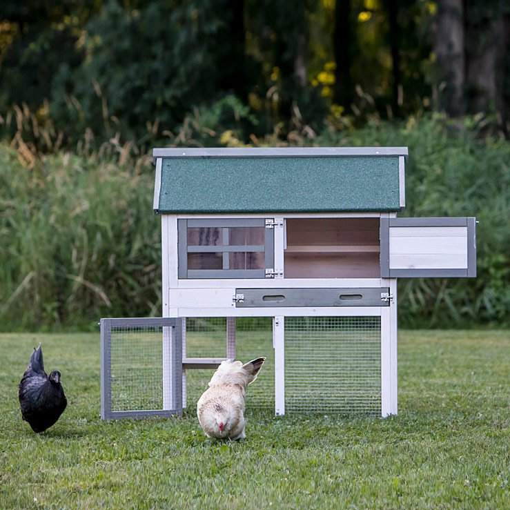 chicken coop cost quot the townhouse quot chicken coop up to 3 chickens 2165