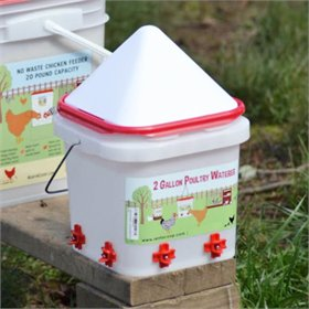 2 Gal Bucket Waterer with Nipples & Cups (up to 15 chickens)