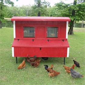 Fiberglass 5x8 Chicken Coop (up to 20 Chickens)
