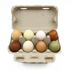 Pulp 8-Egg Natural Cartons