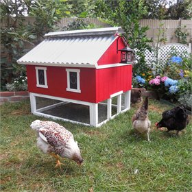 Smart Easy Clean Chicken Coop (up to 6 chickens)