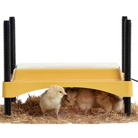 EcoGlow Safety 600 Chick Brooder + Cover (up to 15 chicks)