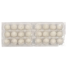 Plastic 12-Egg Quail Egg Carton, 25 pack (see size options)