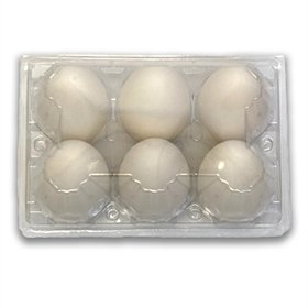 Plastic 6-Egg Duck Egg Cartons, 25 count (see size options)