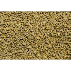 Soy-Free Organic Developer Feed, 50lb