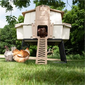 Ultimate Chicken Coop w/feeder and waterer (up to 6 chickens), Beige