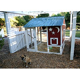 Chicken Coop Plans, two sets! (Up to 10 chickens)