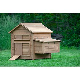 The Bungalow Chicken Coop  (up to 6 chickens)