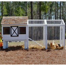 Dominique Chicken Coop (up to 10 chickens)
