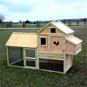 Seymour Chicken Coop (up to 4 chickens)