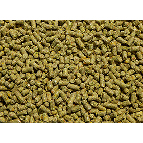 Organic Layer Feed, 25lb, Ships Free Western US