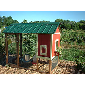 4x8 House Building Plans (4-5 chickens)
