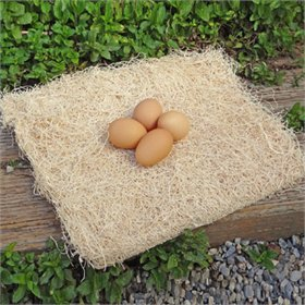 Excelsior Nest Box Pad 13 x 13 (Set of 10)