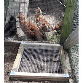 Chicken Run Raised Bed Building Plans